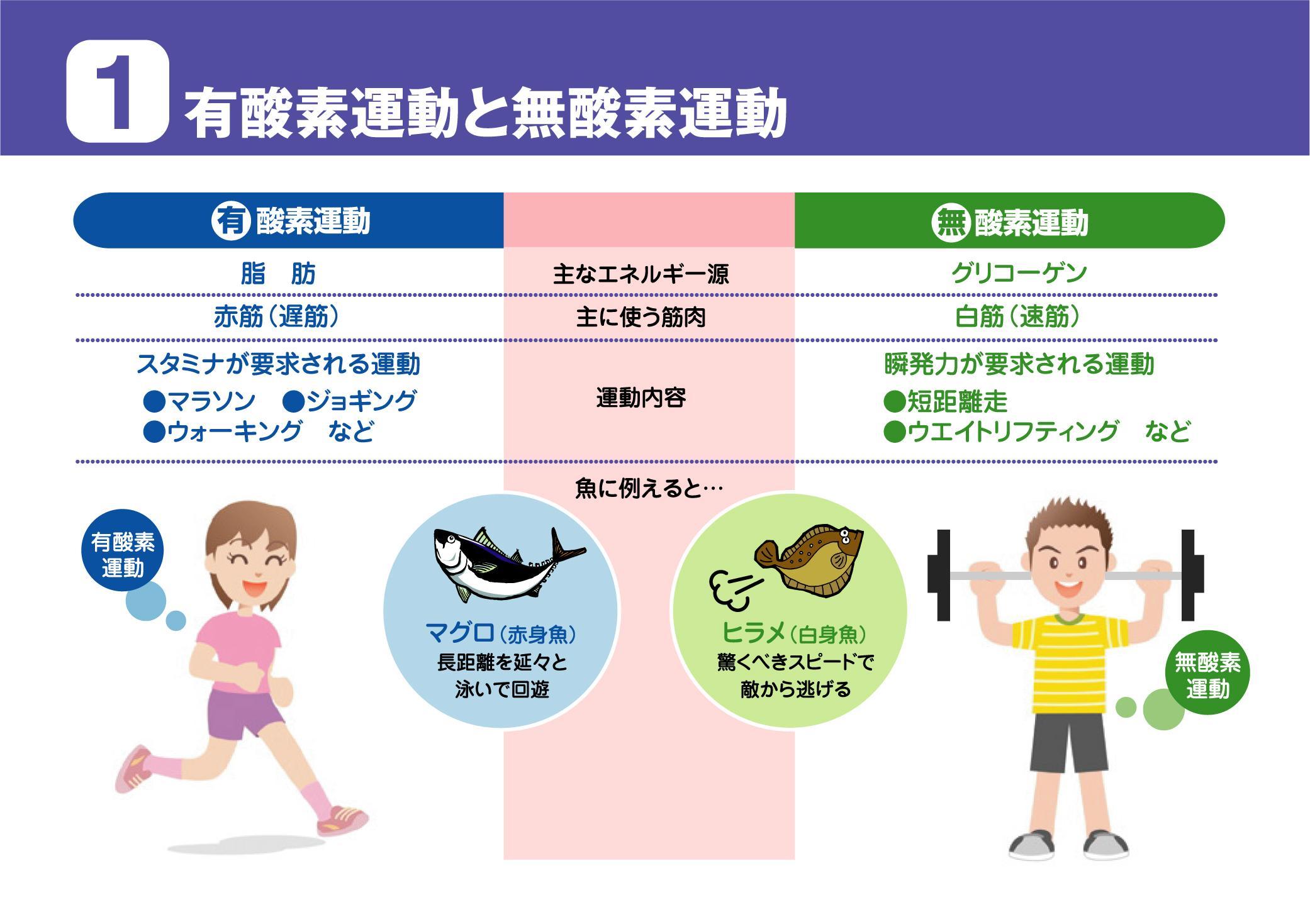 運動と酸素